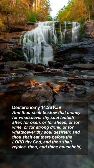 Deuteronomy 14:26 KJV Mobile Phone Wallpaper - And thou shalt bestow that money for whatsoever - Mobile Bible Verse Wallpaper
