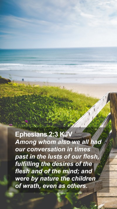 Ephesians 2:3 KJV Mobile Phone Wallpaper - Among whom also we all had our conversation in - Mobile Bible Verse Wallpaper