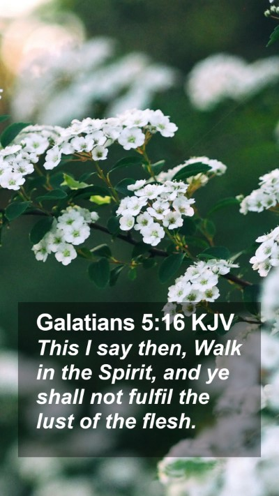 Galatians 5:16 KJV Mobile Phone Wallpaper - This I say then, Walk in the Spirit, and ye shall - Mobile Bible Verse Wallpaper