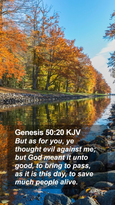 Genesis 50:20 KJV Mobile Phone Wallpaper - But as for you, ye thought evil against me; but - Mobile Bible Verse Wallpaper