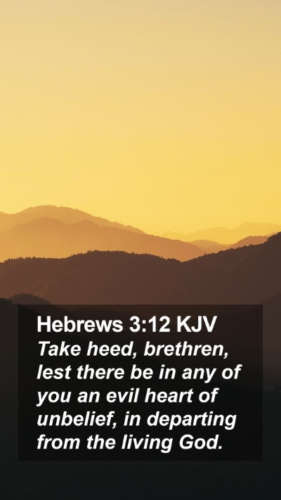 Hebrews 3:12 KJV Mobile Phone Wallpaper - Take heed, brethren, lest there be in any of you - Mobile Bible Verse Wallpaper