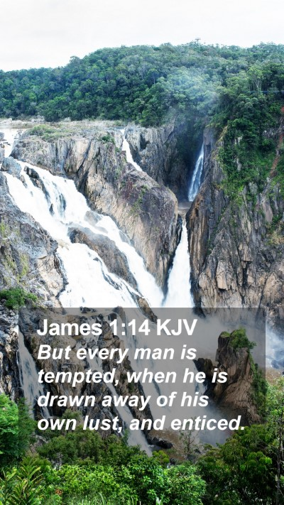 James 1:14 KJV Mobile Phone Wallpaper - But every man is tempted, when he is drawn away - Mobile Bible Verse Wallpaper
