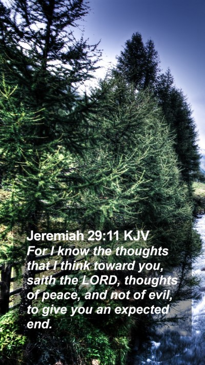 Jeremiah 29:11 KJV Mobile Phone Wallpaper - For I know the thoughts that I think toward you, saith the LORD, thoughts of peace - Mobile Bible Verse Wallpaper