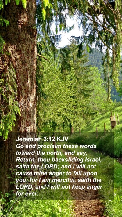 Jeremiah 3:12 KJV Mobile Phone Wallpaper - Go and proclaim these words toward the north, and - Mobile Bible Verse Wallpaper