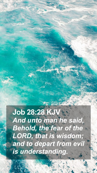 Job 28:28 KJV Mobile Phone Wallpaper - And unto man he said, Behold, the fear of the - Mobile Bible Verse Wallpaper