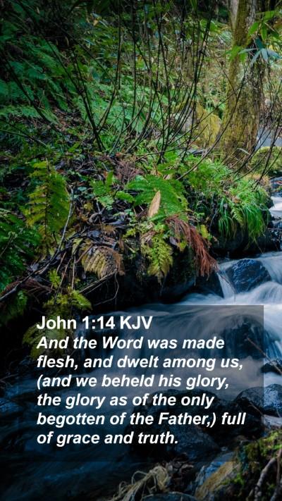 John 1:14 KJV Mobile Phone Wallpaper - And the Word was made flesh, and dwelt among us, - Mobile Bible Verse Wallpaper
