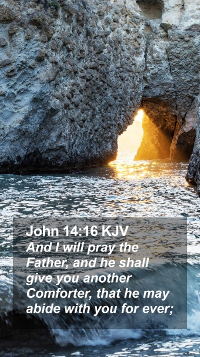John 14:16 KJV Mobile Phone Wallpaper - And I will pray the Father, and he shall give you another Comforter, that he may abide with you for ever; - Mobile Bible Verse Wallpaper