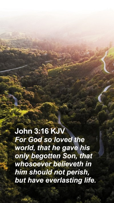 John 3:16 KJV Mobile Phone Wallpaper - For God so loved the world, that he gave his only begotten Son, that whosoever believeth in him should not perish, but have everlasting life. - Mobile Bible Verse Wallpaper