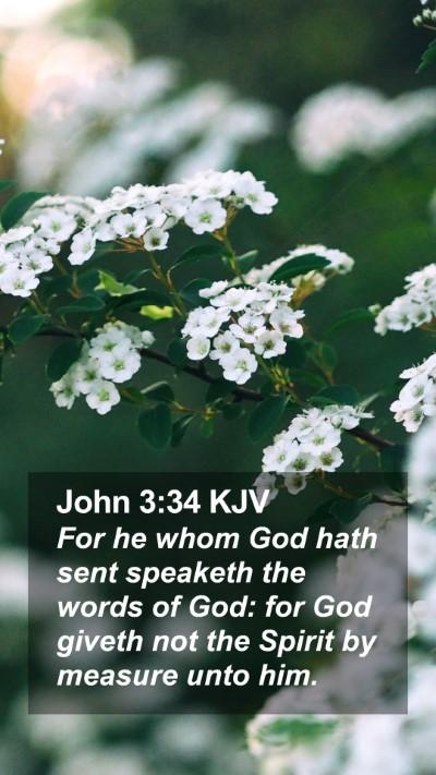 John 3:34 KJV Mobile Phone Wallpaper - For he whom God hath sent speaketh the words of - Mobile Bible Verse Wallpaper