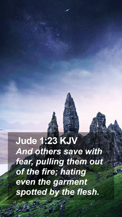 Jude 1:23 KJV Mobile Phone Wallpaper - And others save with fear, pulling them out of - Mobile Bible Verse Wallpaper