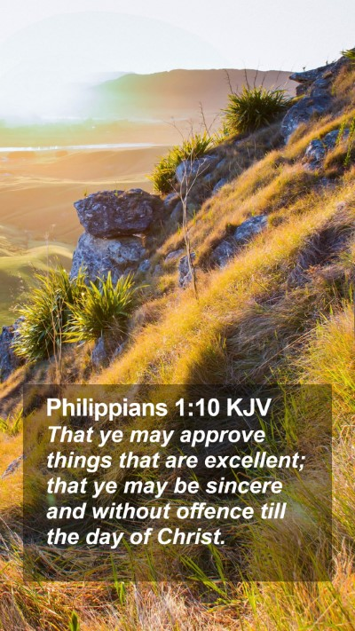 Philippians 1:10 KJV Mobile Phone Wallpaper - That ye may approve things that are excellent; - Mobile Bible Verse Wallpaper