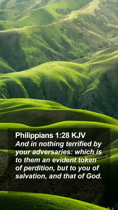 Philippians 1:28 KJV Mobile Phone Wallpaper - And in nothing terrified by your adversaries: - Mobile Bible Verse Wallpaper