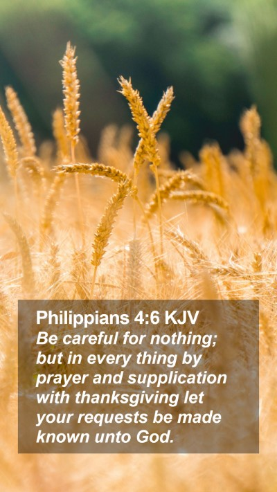 Philippians 4:6 KJV Mobile Phone Wallpaper - Be careful for nothing; but in every thing by prayer and supplication with thanksgiving let your requests be made known unto God. - Mobile Bible Verse Wallpaper