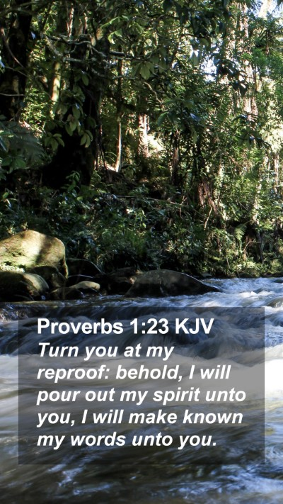 Proverbs 1:23 KJV Mobile Phone Wallpaper - Turn you at my reproof: behold, I will pour out - Mobile Bible Verse Wallpaper