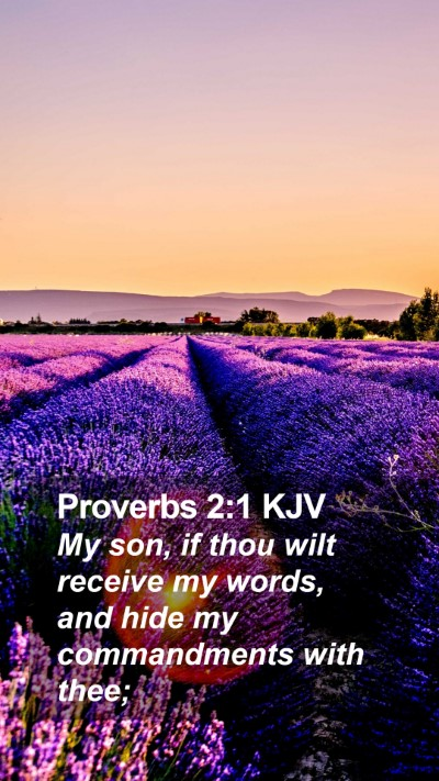 Proverbs 2:1 KJV Mobile Phone Wallpaper - My son, if thou wilt receive my words, and hide - Mobile Bible Verse Wallpaper