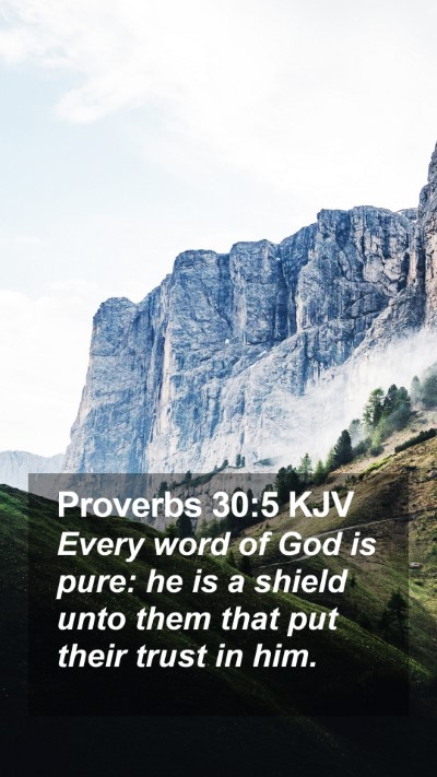 Proverbs 30:5 KJV Mobile Phone Wallpaper - Every word of God is pure: he is a shield unto - Mobile Bible Verse Wallpaper