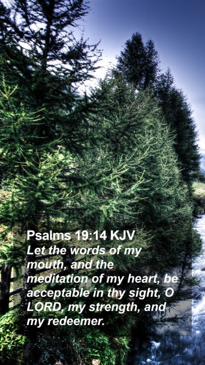 Psalms 19:14 KJV Mobile Phone Wallpaper - Let the words of my mouth, and the meditation of - Mobile Bible Verse Wallpaper