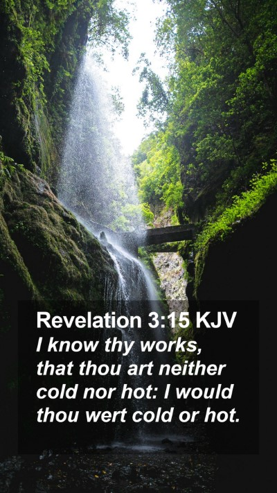 Revelation 3:15 KJV Mobile Phone Wallpaper - I know thy works, that thou art neither cold nor - Mobile Bible Verse Wallpaper
