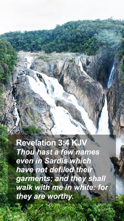 Revelation 3:4 KJV Mobile Phone Wallpaper - Thou hast a few names even in Sardis which have - Mobile Bible Verse Wallpaper