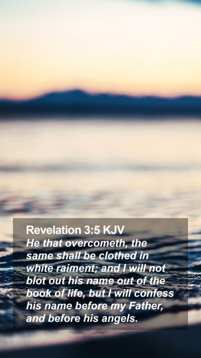 Revelation 3:5 KJV Mobile Phone Wallpaper - He that overcometh, the same shall be clothed in - Mobile Bible Verse Wallpaper