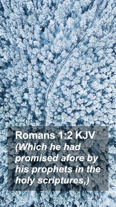 Romans 1:2 KJV Mobile Phone Wallpaper - (Which he had promised afore by his prophets in - Mobile Bible Verse Wallpaper