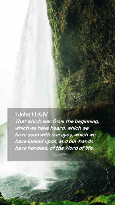 Picture 02 - 1 John 1:1 KJV Mobile Phone Wallpaper - That which was from the beginning, which we have - Mobile Bible Verse Wallpaper
