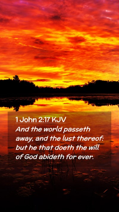 Picture 02 - 1 John 2:17 KJV Mobile Phone Wallpaper - And the world passeth away, and the lust thereof: - Mobile Bible Verse Wallpaper