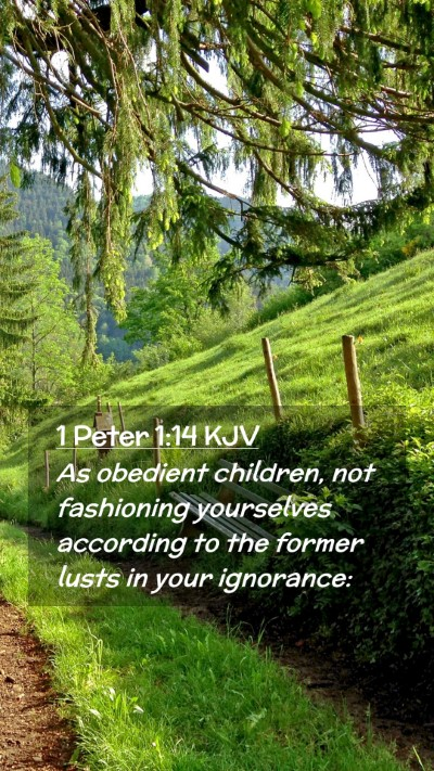 Picture 02 - 1 Peter 1:14 KJV Mobile Phone Wallpaper - As obedient children, not fashioning yourselves - Mobile Bible Verse Wallpaper