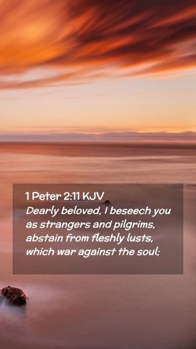 Picture 02 - 1 Peter 2:11 KJV Mobile Phone Wallpaper - Dearly beloved, I beseech you as strangers and - Mobile Bible Verse Wallpaper