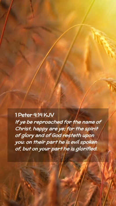 Picture 02 - 1 Peter 4:14 KJV Mobile Phone Wallpaper - If ye be reproached for the name of Christ, happy - Mobile Bible Verse Wallpaper