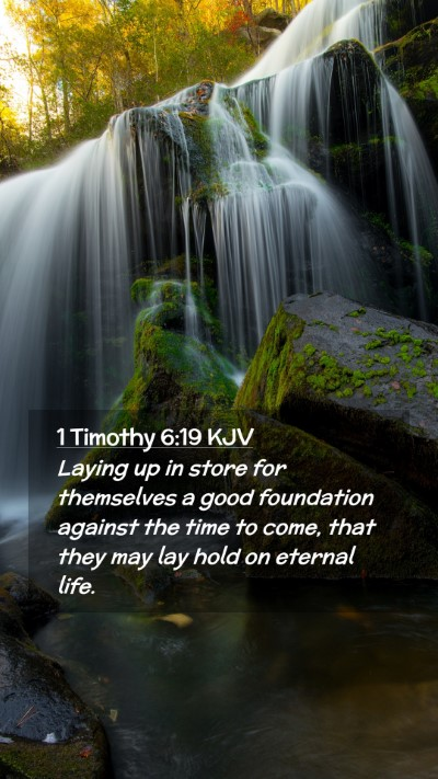 Picture 02 - 1 Timothy 6:19 KJV Mobile Phone Wallpaper - Laying up in store for themselves a good - Mobile Bible Verse Wallpaper