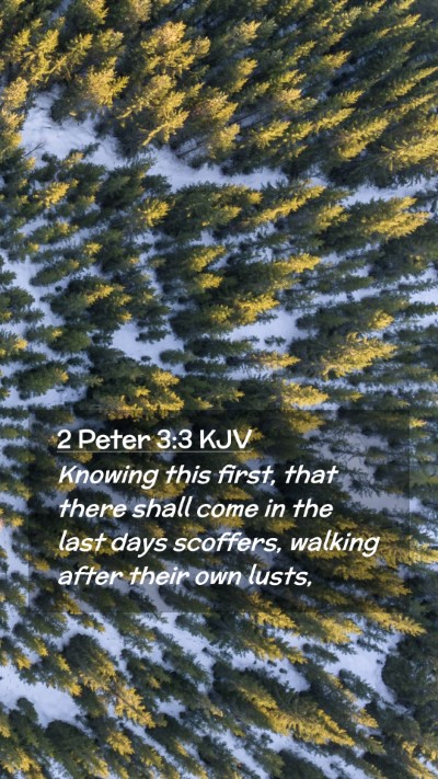 Picture 02 - 2 Peter 3:3 KJV Mobile Phone Wallpaper - Knowing this first, that there shall come in the - Mobile Bible Verse Wallpaper