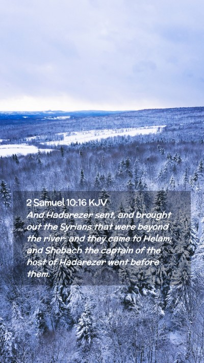 Picture 02 - 2 Samuel 10:16 KJV Mobile Phone Wallpaper - And Hadarezer sent, and brought out the Syrians - Mobile Bible Verse Wallpaper