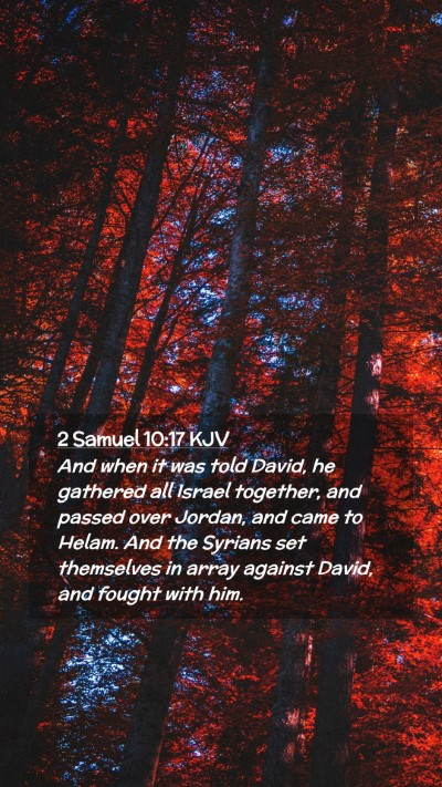 Picture 02 - 2 Samuel 10:17 KJV Mobile Phone Wallpaper - And when it was told David, he gathered all - Mobile Bible Verse Wallpaper