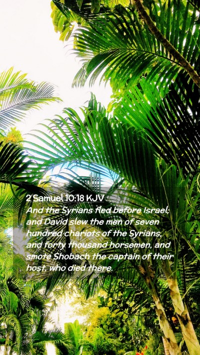 Picture 02 - 2 Samuel 10:18 KJV Mobile Phone Wallpaper - And the Syrians fled before Israel; and David - Mobile Bible Verse Wallpaper