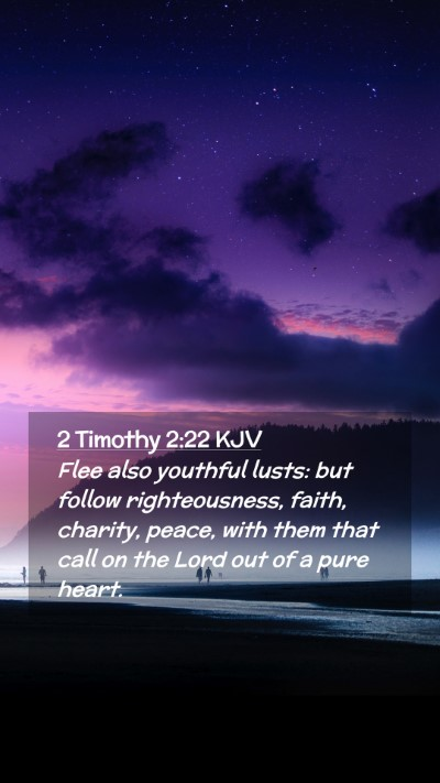 Picture 02 - 2 Timothy 2:22 KJV Mobile Phone Wallpaper - Flee also youthful lusts: but follow - Mobile Bible Verse Wallpaper