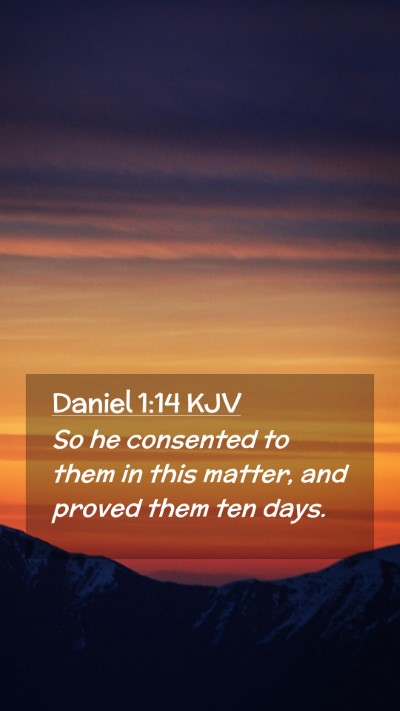 Picture 02 - Daniel 1:14 KJV Mobile Phone Wallpaper - So he consented to them in this matter, and - Mobile Bible Verse Wallpaper