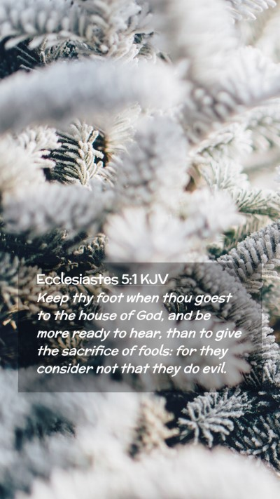 Picture 02 - Ecclesiastes 5:1 KJV Mobile Phone Wallpaper - Keep thy foot when thou goest to the house of - Mobile Bible Verse Wallpaper