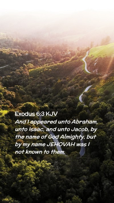 Picture 02 - Exodus 6:3 KJV Mobile Phone Wallpaper - And I appeared unto Abraham, unto Isaac, and unto - Mobile Bible Verse Wallpaper