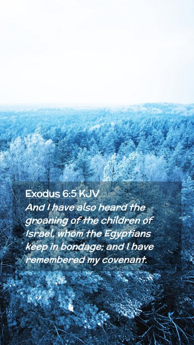 Picture 02 - Exodus 6:5 KJV Mobile Phone Wallpaper - And I have also heard the groaning of the - Mobile Bible Verse Wallpaper