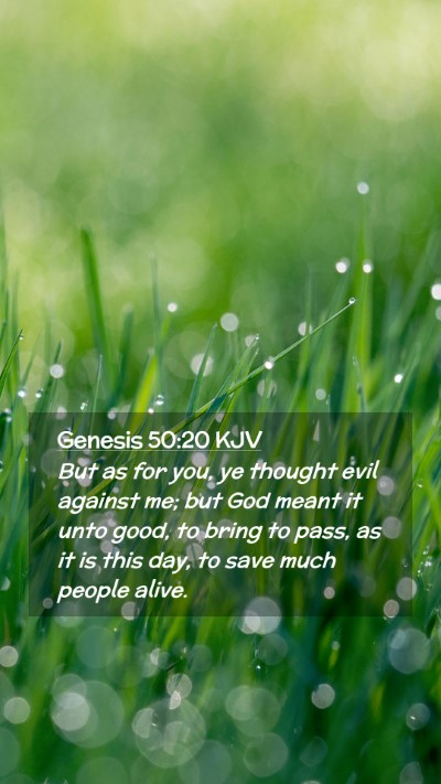 Picture 02 - Genesis 50:20 KJV Mobile Phone Wallpaper - But as for you, ye thought evil against me; but - Mobile Bible Verse Wallpaper
