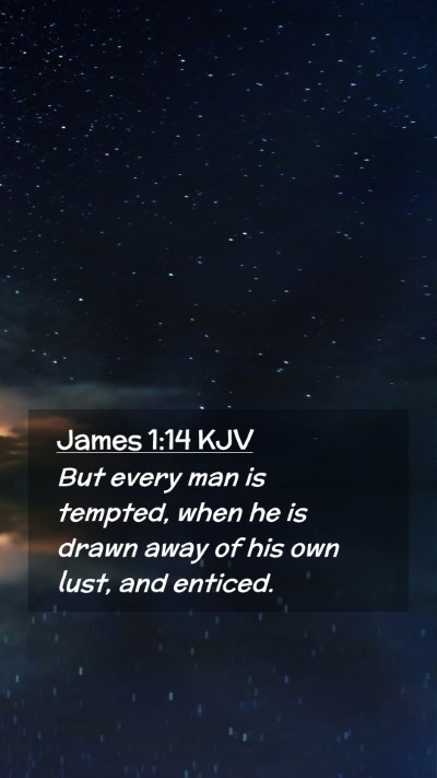 Picture 02 - James 1:14 KJV Mobile Phone Wallpaper - But every man is tempted, when he is drawn away - Mobile Bible Verse Wallpaper