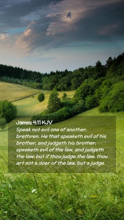 Picture 02 - James 4:11 KJV Mobile Phone Wallpaper - Speak not evil one of another, brethren. He that - Mobile Bible Verse Wallpaper