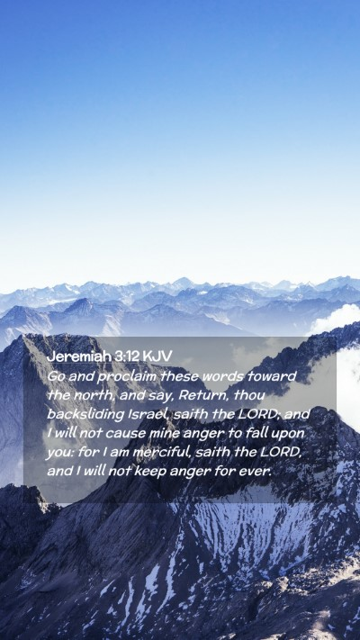 Picture 02 - Jeremiah 3:12 KJV Mobile Phone Wallpaper - Go and proclaim these words toward the north, and - Mobile Bible Verse Wallpaper