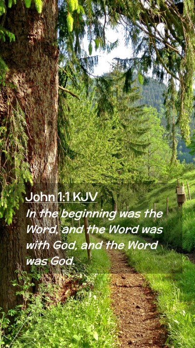 Picture 02 - John 1:1 KJV Mobile Phone Wallpaper - In the beginning was the Word, and the Word was - Mobile Bible Verse Wallpaper