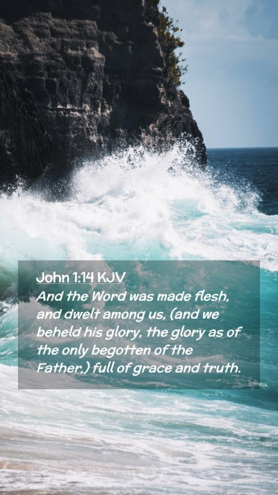 Picture 02 - John 1:14 KJV Mobile Phone Wallpaper - And the Word was made flesh, and dwelt among us, - Mobile Bible Verse Wallpaper