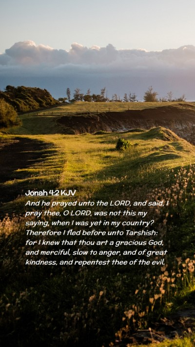 Picture 02 - Jonah 4:2 KJV Mobile Phone Wallpaper - And he prayed unto the LORD, and said, I pray - Mobile Bible Verse Wallpaper
