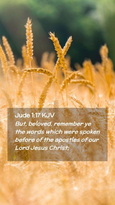 Picture 02 - Jude 1:17 KJV Mobile Phone Wallpaper - But, beloved, remember ye the words which were - Mobile Bible Verse Wallpaper