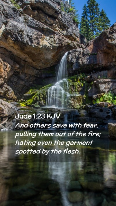 Picture 02 - Jude 1:23 KJV Mobile Phone Wallpaper - And others save with fear, pulling them out of - Mobile Bible Verse Wallpaper