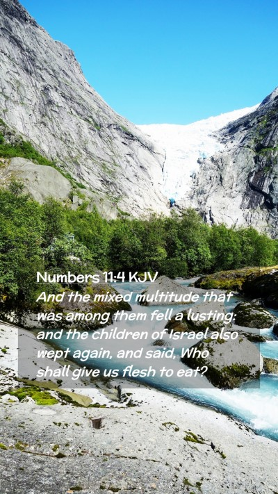 Picture 02 - Numbers 11:4 KJV Mobile Phone Wallpaper - And the mixed multitude that was among them fell - Mobile Bible Verse Wallpaper